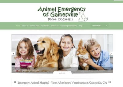 animal-emergency-clinic-800