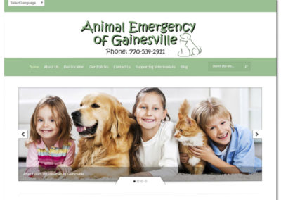 Animal Emergency of Gainesville - Website Design